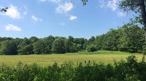 Farm Land for Lease - Accepting Bids