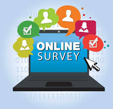 District Instructional Survey